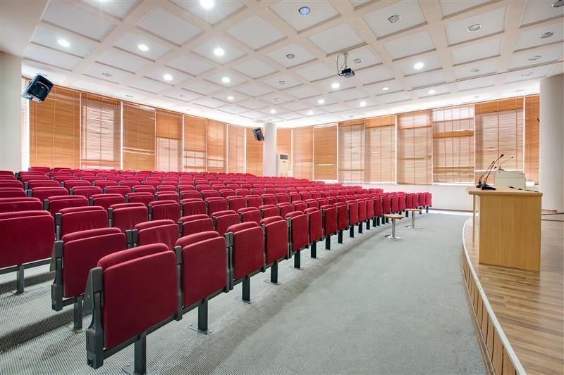conference cinema theater halls. Black Bedroom Furniture Sets. Home Design Ideas