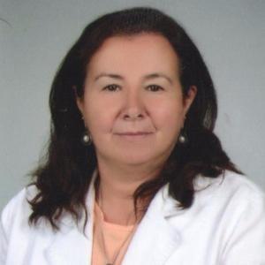 Prof. Dr. Deniz Aynur Güler