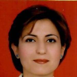 Reyhan METE